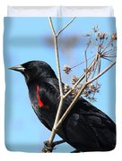Red-Winged Blackbird . 40D5718 Duvet Cover by Wingsdomain Art and Photography