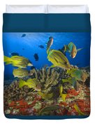 Reef Scene Duvet Cover by Dave Fleetham - Printscapes