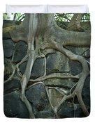 Roots and Rocks Duvet Cover by Douglas Barnett