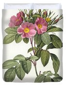 Rosa Carolina Corymbosa Duvet Cover by Pierre Joseph Redoute