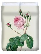 Rosa Centifolia Bullata Duvet Cover by Pierre Joseph Redoute