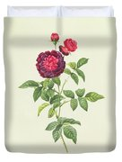 Rosa Gallica Gueriniana Duvet Cover by Pierre Joseph Redoute