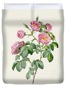 Rosa Mollissima Duvet Cover by Claude Antoine Thory