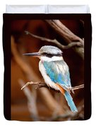 Sacred Kingfisher Duvet Cover by Mike  Dawson