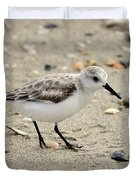 Sanderling Duvet Cover by Al Powell Photography USA
