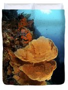 Sea Fan Coral - Indonesia Duvet Cover by Steve Rosenberg - Printscapes
