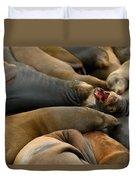 Sea Lions At Pier 39 San Francisco Duvet Cover by Sebastian Musial