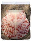 Sea Shell Duvet Cover by Mike McGlothlen
