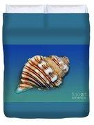 Seashell Wall Art 1 Duvet Cover by Kaye Menner