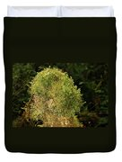 Seasons Of Magic - Hoh Rainforest Olympic National Park Wa Duvet Cover by Christine Till