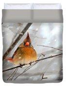 Snow Surprise Duvet Cover by Lois Bryan