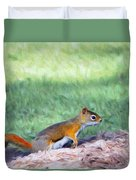 Squirrel In The Park Duvet Cover by Jeff Kolker