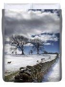 Stone Fence, Weardale, County Durham Duvet Cover by John Short