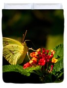 Sulpher Butterfly on Lantana Duvet Cover by Douglas Barnett