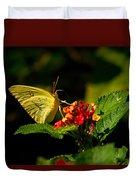 Sulpher Butterfly On Lantana Duvet Cover by Douglas Barnett