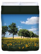 Sunflower Field 2 Duvet Cover by SK Pfphotography