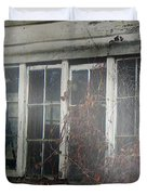 The Child at the Window Duvet Cover by RC DeWinter