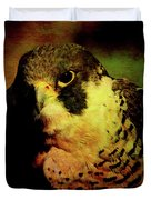The Falcon Duvet Cover by Wingsdomain Art and Photography