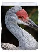 The Greater Sandhill Crane Duvet Cover by Christopher Holmes