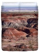 The Painted Desert  8062 Duvet Cover by James BO  Insogna