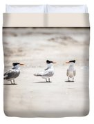The Talking Terns Duvet Cover by Lisa Russo
