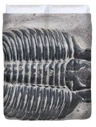 Trilobite Duvet Cover by Robert J Erwin and Photo Researchers