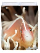 Tropical Fish Pink Clownfish Duvet Cover by MotHaiBaPhoto Prints
