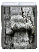 Western Red Cedar - Thuja Plicata - Olympic National Park Wa Duvet Cover by Christine Till