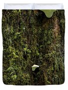 White Mushrooms - Quinault temperate rain forest - Olympic Peninsula WA Duvet Cover by Christine Till