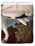 Whooping Crane Duvet Cover by John James Audubon