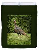 Wild Turkey Duvet Cover by Kelley King