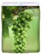 Wine Before Picture Duvet Cover by Lisa Knechtel
