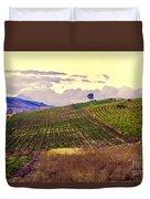 Wine Vineyard In Sicily Duvet Cover by Madeline Ellis