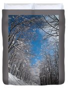 Winter Road Duvet Cover by Evgeni Dinev