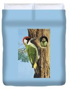 Woodpecker Duvet Cover by RB Davis