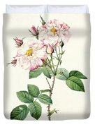York And Lancaster Rose Duvet Cover by Pierre Joseph Redoute