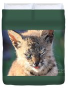 Young Bobcat 04 Duvet Cover by Wingsdomain Art and Photography