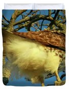 Young Red-tail Duvet Cover by Phill  Doherty