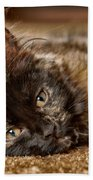 Coco Kitten Bath Towel by Trever Miller