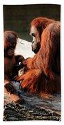 Family Time Bath Sheet by Trever Miller