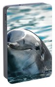 Curious Dolphin Portable Battery Charger by Mariola Bitner