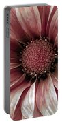 Daisy Daisy Blush Pink Portable Battery Charger by Angelina Vick