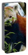 Red Panda Portable Battery Charger by Trever Miller