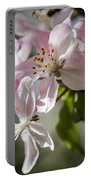Apple Blossom Portable Battery Charger by Ralf Kaiser