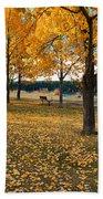 Autumn In Calgary Beach Sheet by Trever Miller