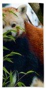Red Panda Beach Sheet by Trever Miller