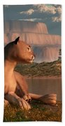 Cougar At Evening Beach Sheet by Daniel Eskridge