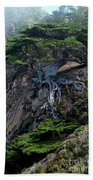 Point Lobos Veteran Cypress Tree Beach Towel by Charlene Mitchell