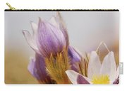 Prairie Crocus Carry-all Pouch by Trever Miller