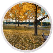 Autumn In Calgary Round Beach Towel by Trever Miller